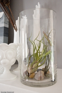 a tall, cylindrical glass vase is great for the leggy ones.
