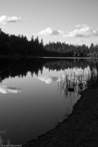 Letts Lake October 2014 097-2