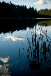 Letts Lake October 2014 099