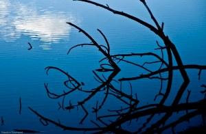 Letts Lake October 2014 104